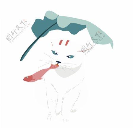 白色的小猫图片