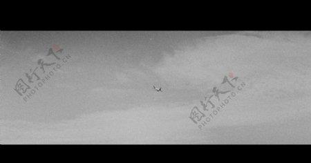 黑白摄影照片图片